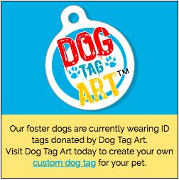 Sponsor Dog Tag Art