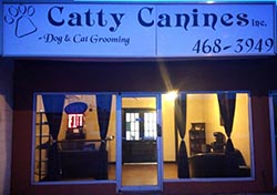 Sponsor Catty Canines